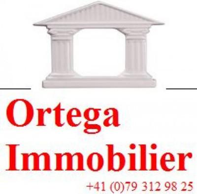 Ortega Immobilier logo