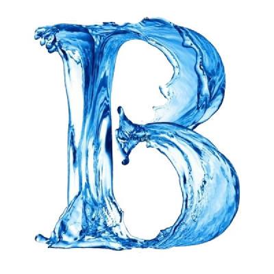 Batifort logo