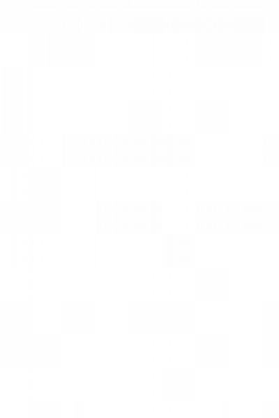 Bertrand Sechaud logo