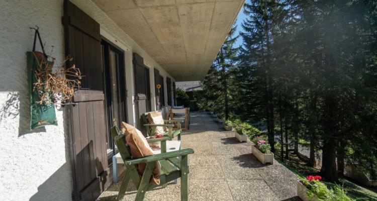 Gryon Immo vous propose un spacieux 2 pièces au rez-de-chaussée avec belle terrasse sud image 6