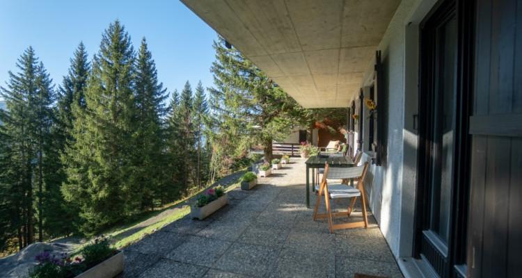 Gryon Immo vous propose un mignon 2 pièces au rez-de-chaussée avec belle terrasse Sud image 5