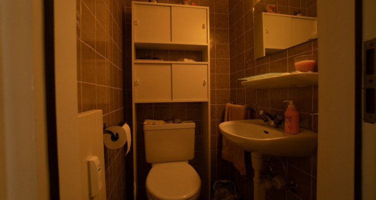 Gryon Immo vous propose un spacieux 4,5 pièces en duplex, proche de la nature, magnifique vue image 10