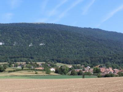 Terrain constructible de 1230m2 image 1