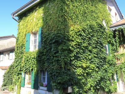Appartement de 276m2 avec 5 Chambres à Dardagny image 1