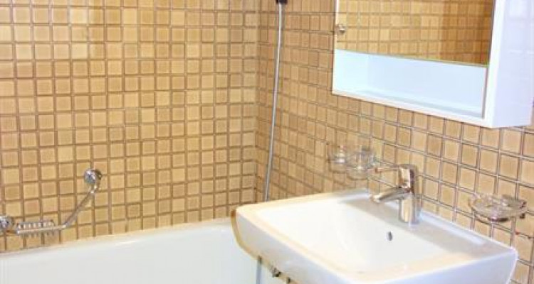 Spacious 4 rooms apartment for rent in Malagnou, Geneva, from the 1st of April image 3
