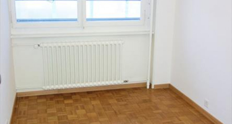 Spacious 4 rooms apartment for rent in Malagnou, Geneva, from the 1st of April image 5