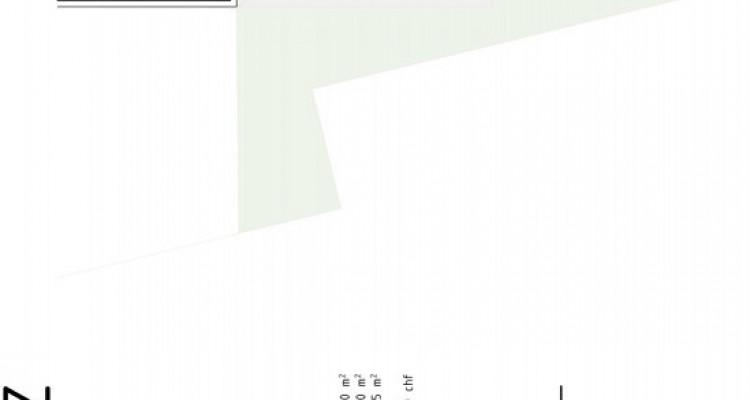FOTI IMMO - Grand 2,5 pièces avec jardin et terrasse de 97 m2. image 6