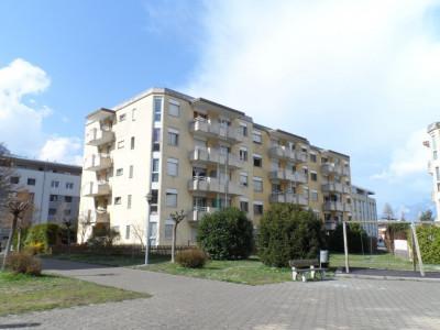 Superbe appartement de 3 pièces, entièrement rénové en 2019 image 1