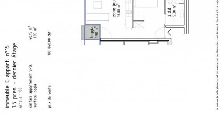 FOTI IMMO - Appartement de 1,5 pièces en attique avec loggia. image 6