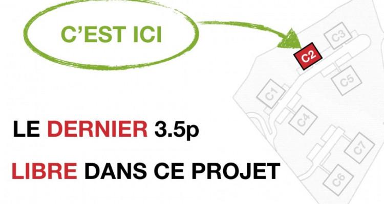 LE DERNIER 3.5p - PRET AOUT 2020 - MAGNIFIQUE VUE - CALME image 6
