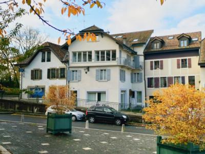 Lot de 3 appartements dans une belle bâtisse à Chêne-Bourg. image 1