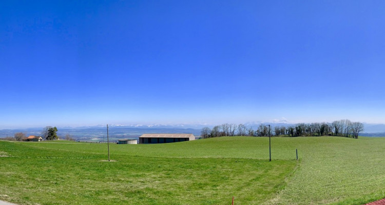 Villa individuelle de 5.5 pièces à 25 minutes de Morges avec vue magnifique sur les Alpes ! image 2