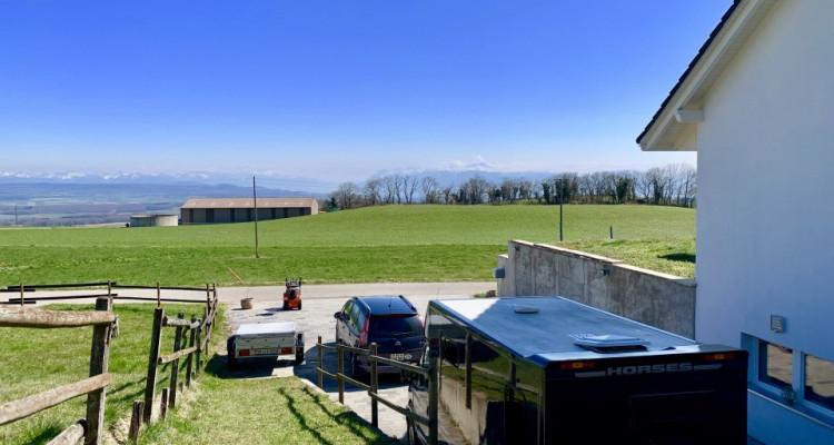 Villa individuelle de 5.5 pièces à 25 minutes de Morges avec vue magnifique sur les Alpes ! image 6