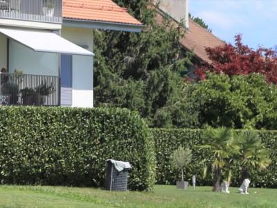 Magnifique 3,5 pces rez de jardin aux normes Minergie image 1