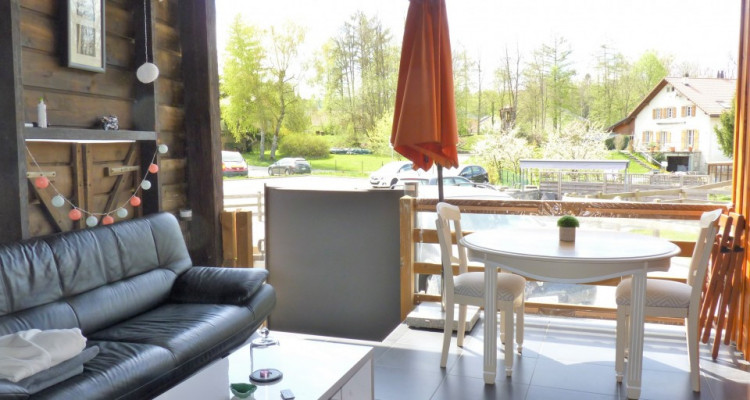 Venez vivre à Carrouge VD ! (15 mn en bus de Lausanne)  image 10