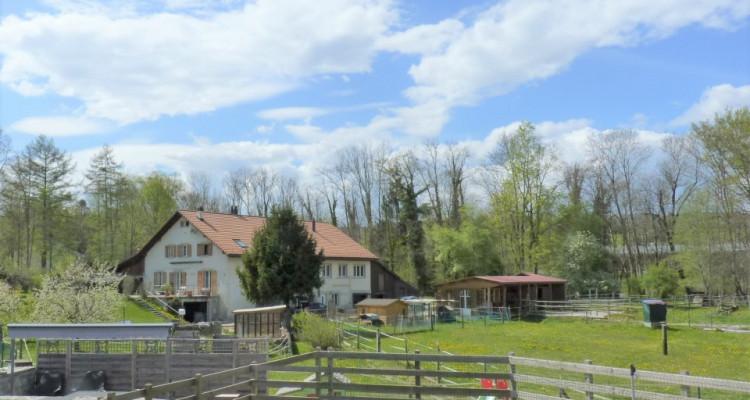 Venez vivre à Carrouge VD ! (15 mn en bus de Lausanne)  image 11