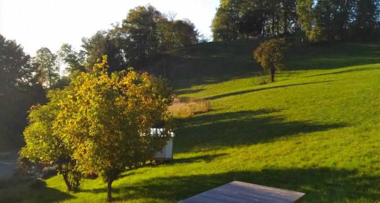 Superbe 5,5 pièces dans les combles avec terrasse et vue splendide image 3