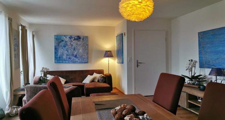 Magnifique appartement / bâtisse de charme / vue imprenable sur le lac image 2