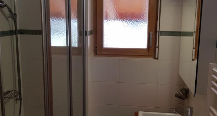 Très bel appartement avec mezzanine et balcon - proche des bains image 4