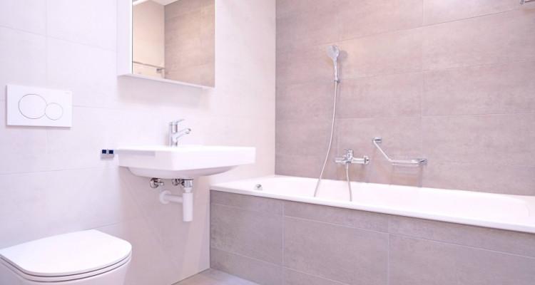 Magnifique appart 3,5 p / 2 chambres / 2 SDB / balcon avec vue image 6