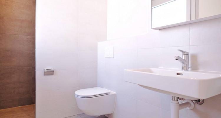 Magnifique appart 3,5 p / 2 chambres / 2 SDB / balcon avec vue image 7