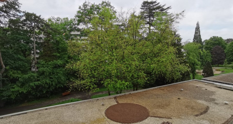 Magnifique 4 pièces à Florissant avec 3 terrasses vue sur parc image 15