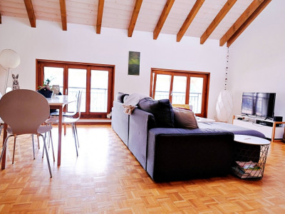 Magnifique appart 3,5 p / 2 chambres / 1 SDB / centre village image 1