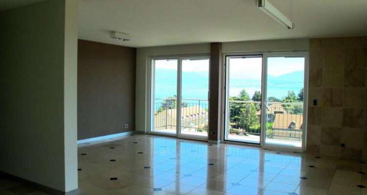 Appartement lumineux avec vue sur le lac ! image 8