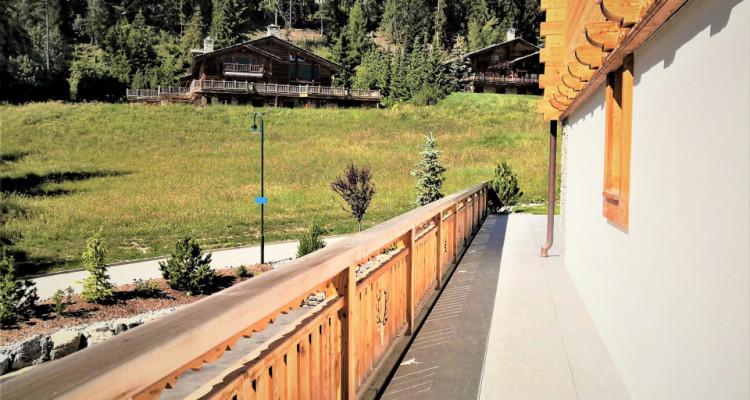 Superbe Chalet Résidentiel individuel ou de 2 appartements,  à choix ! image 8