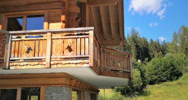 Superbe Chalet Résidentiel individuel ou de 2 appartements,  à choix ! image 11
