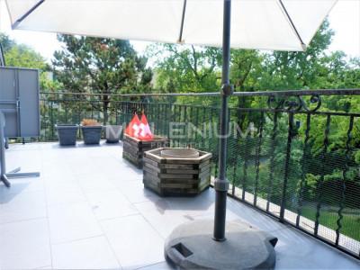 Appartement meublé avec terrasse au Petit Lancy. image 1