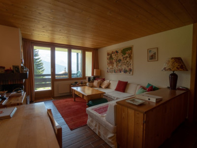 Gryon Immo vous propose un joli 2 pièces avec grand balcon et magnifique vue sur les montagnes image 1