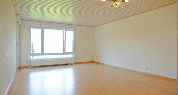 Magnifique appart 2,5 p / 1 chambre / 1 SDB / terrasse avec vue image 1