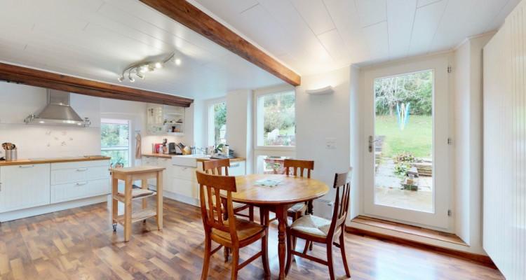 Maison villageoise dans un cadre calme et exceptionnel!  image 6