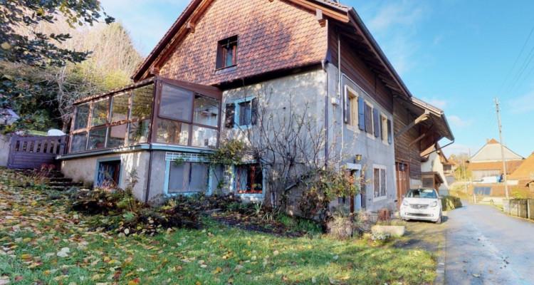 Maison villageoise dans un cadre calme et exceptionnel!  image 1