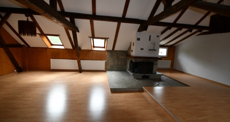 Maison  avec grand  garage-dépôt, idéal pour artisan ou collectionneur de voitures avec deux appartements , image 9