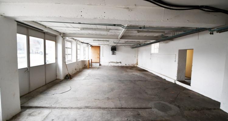 Maison  avec grand  garage-dépôt, idéal pour artisan ou collectionneur de voitures avec deux appartements , image 2