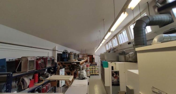FRIBOURG - Surfaces artisanales avec bureaux et grands dépôts image 10