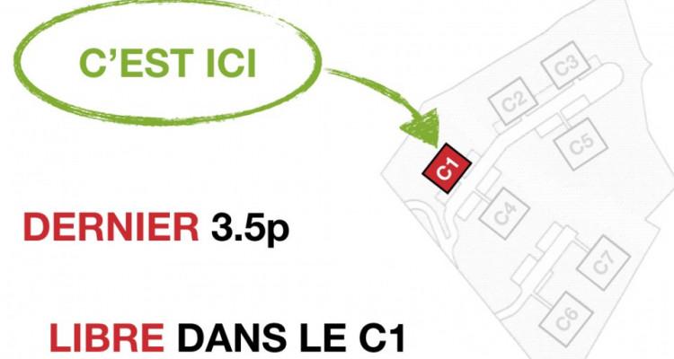DERNIERE CHANCE - VUE PANORAMIQUE MONTAGNE / LAC - CALME image 6