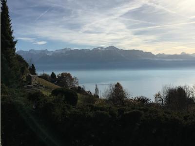 VILLA INDIVIDUELLE - LAVAUX, vue sur le Lac et Alpes  image 1