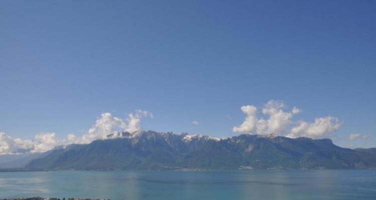 Vue imprenable sur le lac et les montagnes ! image 2