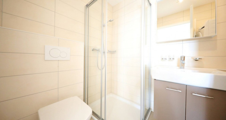 Magnifique appartements 4,5 p / 3,5 p  image 8