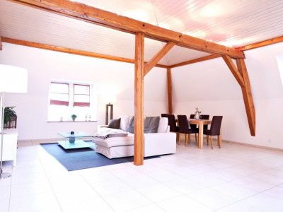 Magnifique appart 2,5 p / 1 chambre / 1 SDB / balcon avec vue lac image 1