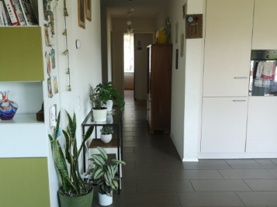 Magnifique appartement minergie de 4,5 pièces / terrasse et balcon image 1