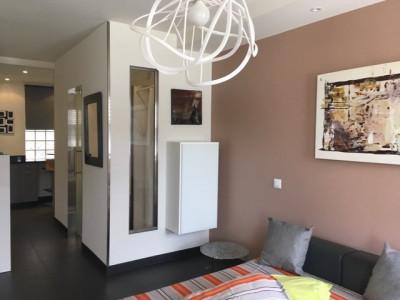 Magnifique studio meublé en plein centre de Genève  image 1