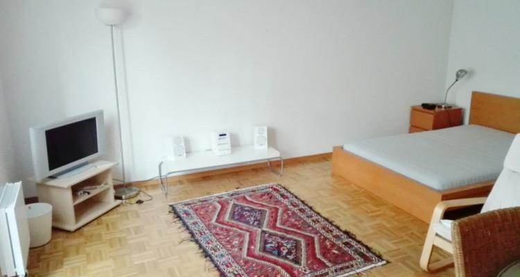 Appartement meublé de 2 pièces au Petit-Saconnex  image 3