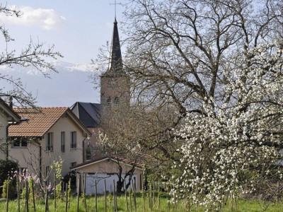Maison de village 8P à Bernex image 1