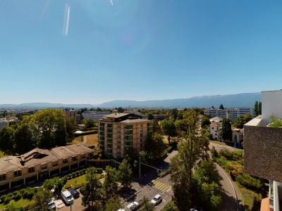 Vue panoramique sur Genève image 1