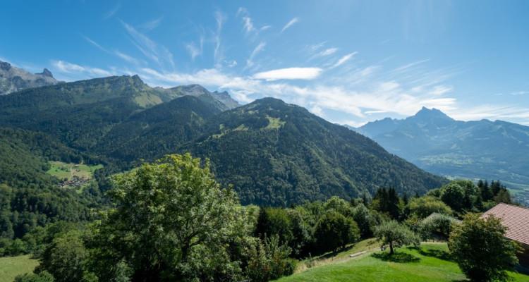 Gryon Immo vous propose un joli chalet rénové avec grand terrain et une magnifique vue  image 19