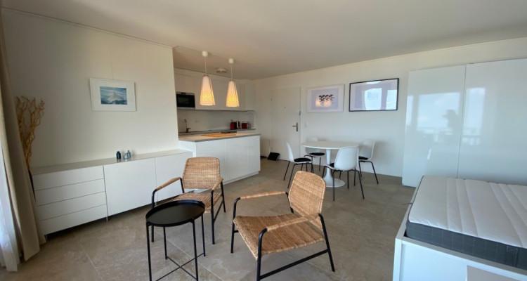 Beau studio meublé avec grand balcon et magnifique vue ! image 3